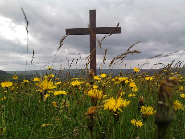 cross-spring
