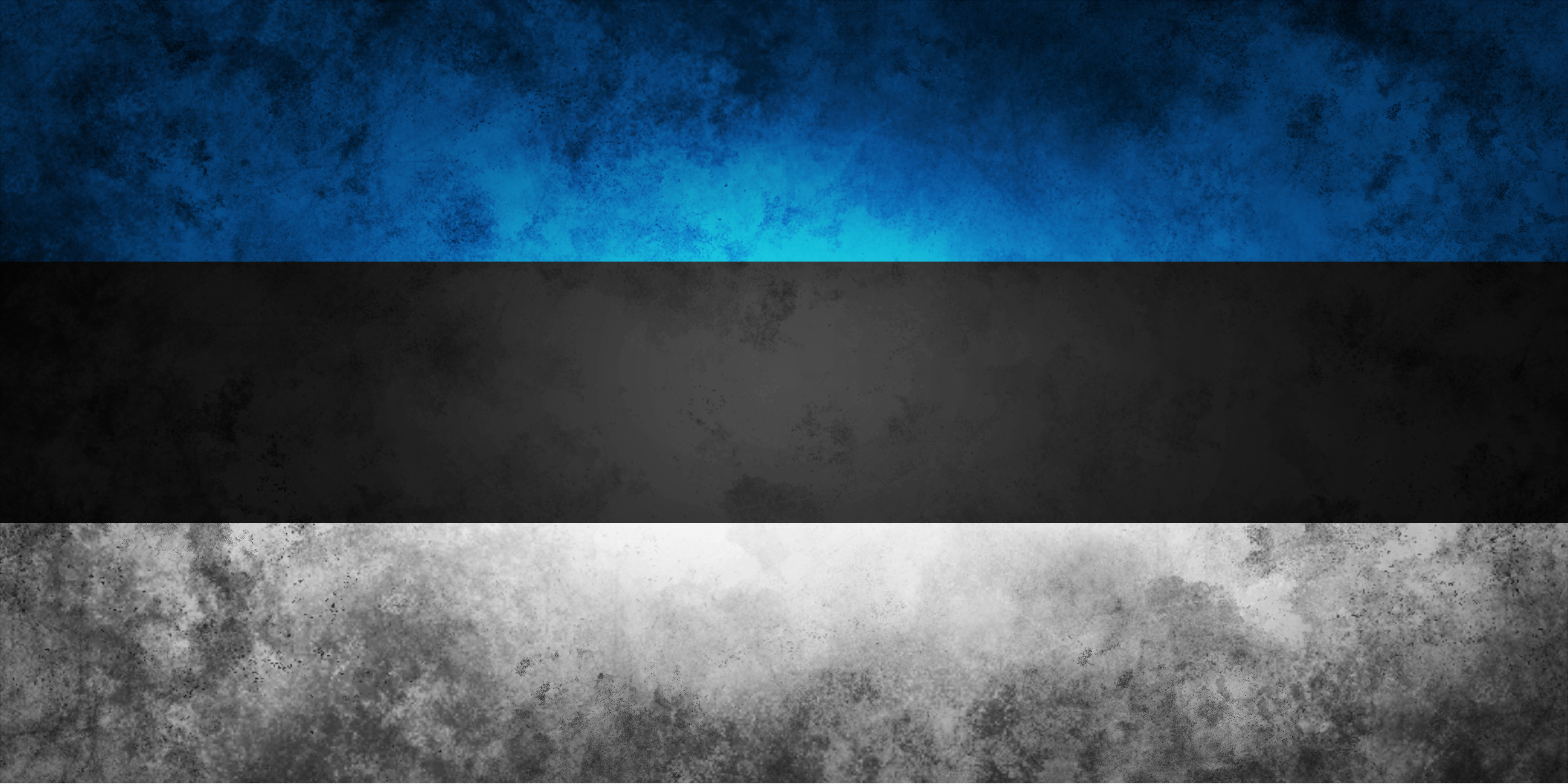 flag-of-estonia-3
